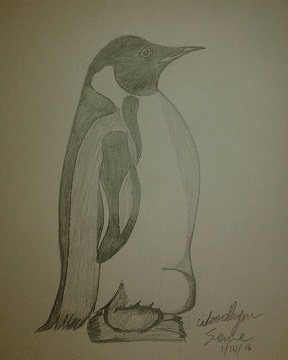 Penguin - resized